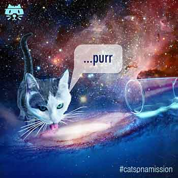 Milky way art - Cats on a mission